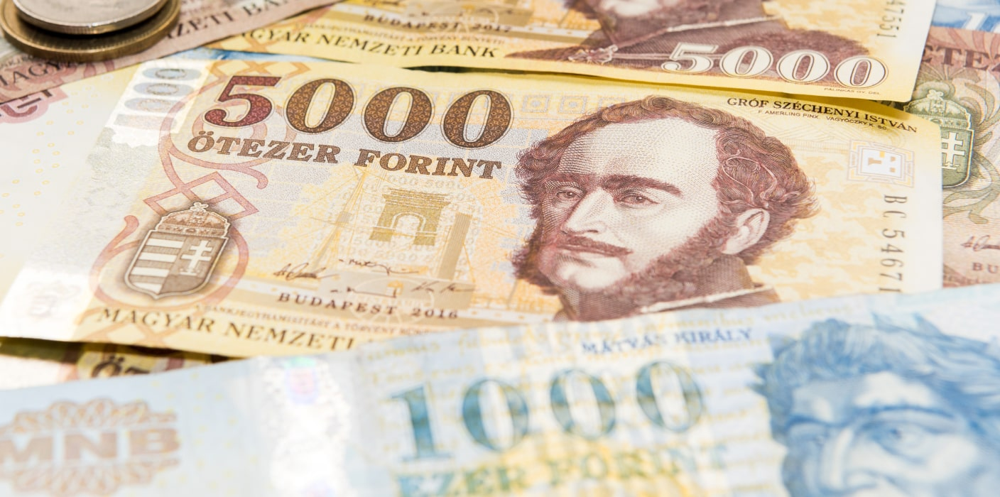 Viewed from above, the image of a 5,000 and 1,000 forint note can be seen in tones of auburn, yellow and blue.